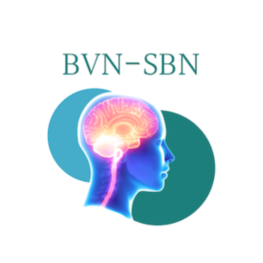 BNS CALL FOR ABSTRACTS: RESEARCH PRIZE 2021